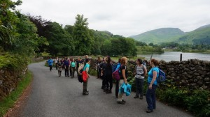Grasmere yoga and hiking view
