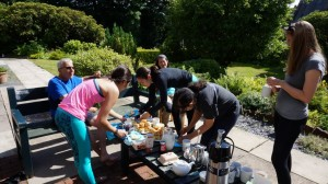 windermere cream tea walk