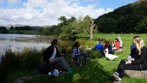 Loughrigg Tarn Geese picnic
