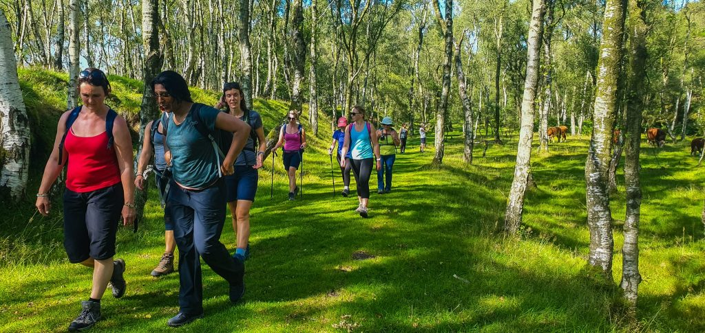 Sociable and friendly groups - Single Yoga hikes break