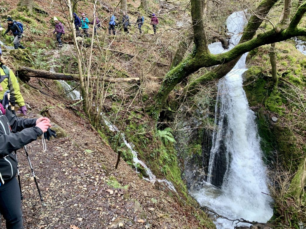 Yoga Hiking adventure at Yewfield group hike